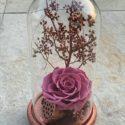 forever rose pink